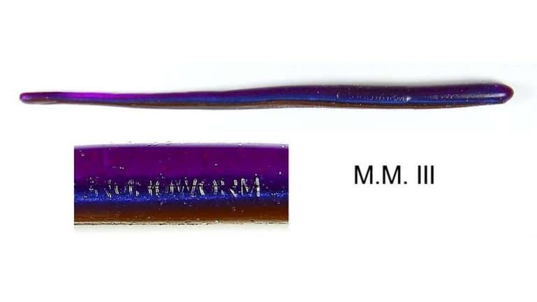 Roboworm Straight Tail Worm - SR-B29F